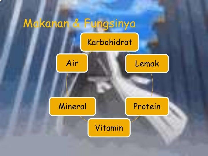 Bab 3 sistem pencernaan pada manusia Slide 3