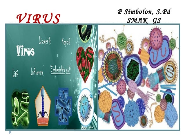 VIRUS  P Simbolon, S.Pd SMAK GS