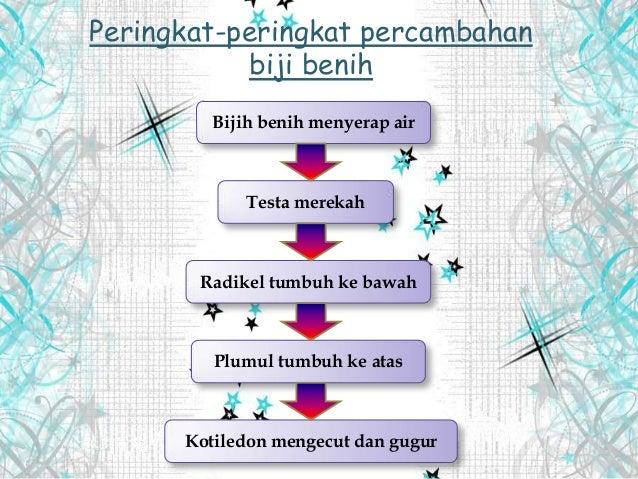 Copy Of Tingkatan 1 Sains Pembiakan Tumbuhan Lessons Tes Teach