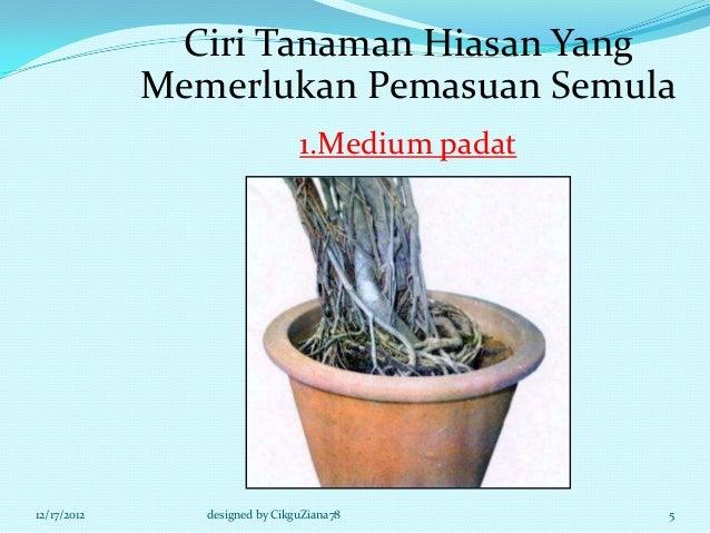 Ciri Tanaman Hiasan Yang             Memerlukan Pemasuan Semula                                1.Medium padat12/17/2012   ...