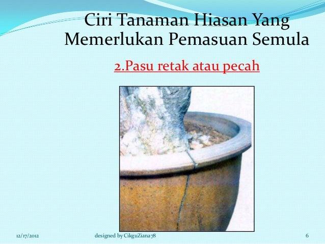 Ciri Tanaman Hiasan Yang             Memerlukan Pemasuan Semula                       2.Pasu retak atau pecah12/17/2012   ...