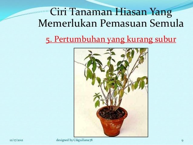Ciri Tanaman Hiasan Yang             Memerlukan Pemasuan Semula              5. Pertumbuhan yang kurang subur12/17/2012   ...