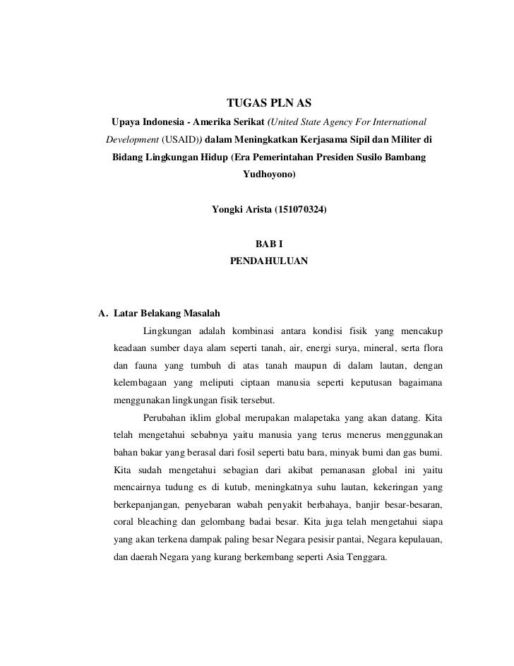 TUGAS PLN AS  Upaya Indonesia - Amerika Serikat (United State Agency For International Development (USAID)) dalam Meningka...
