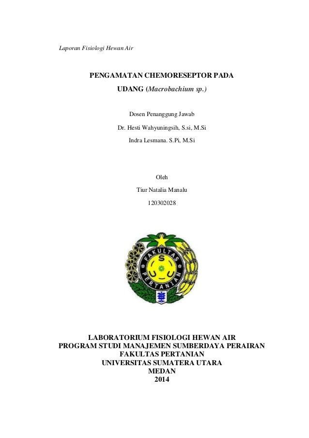 Laporan Fisiologi Hewan Air PENGAMATAN CHEMORESEPTOR PADA UDANG (Macrobachium sp.) Dosen Penanggung Jawab Dr. Hesti Wahyun...