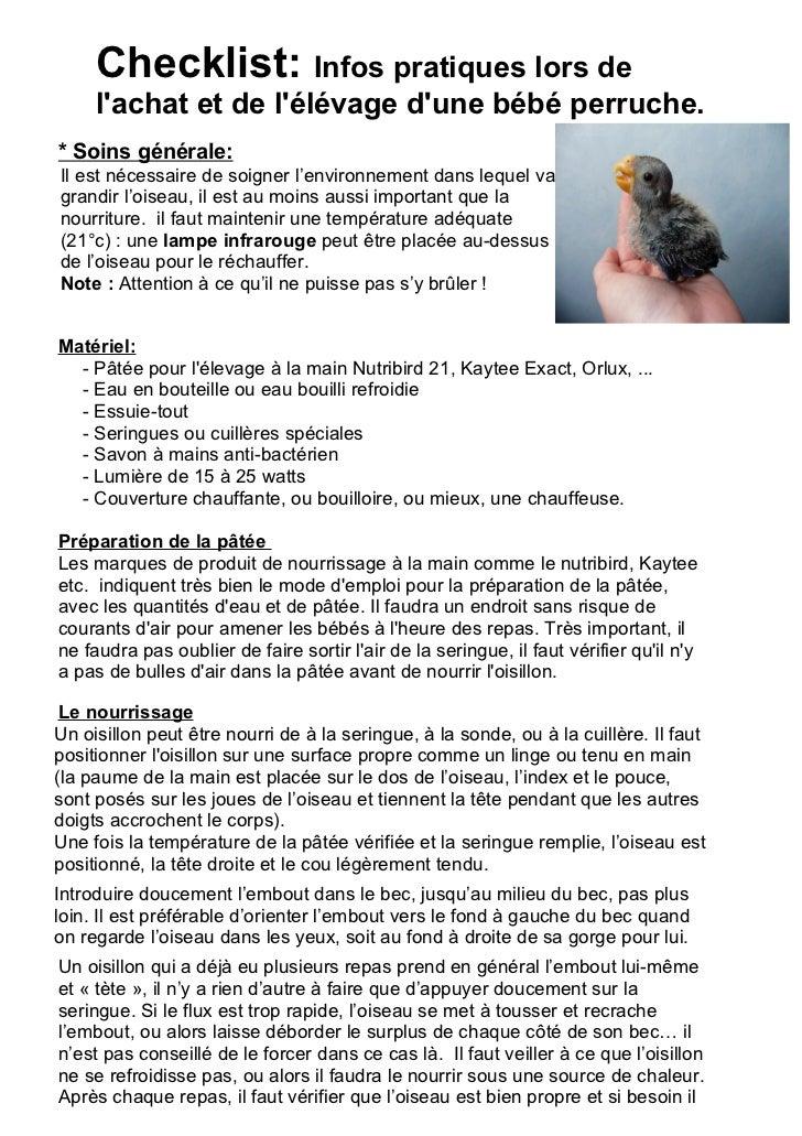 Infos pratiques lors de l'achat et de l'élévage d'une bébé perruche chez animals-express