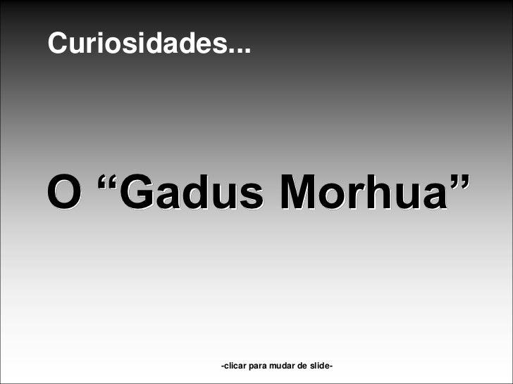 """Curiosidades...O """"Gadus Morhua""""            -clicar para mudar de slide-"""