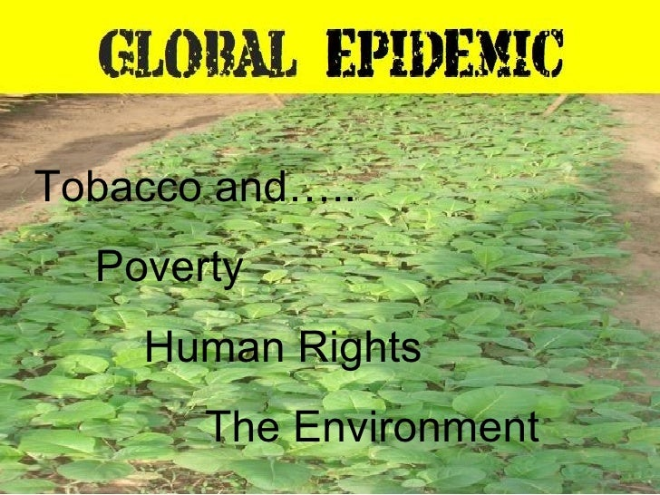 Tobacco and….. Poverty Human Rights The Environment