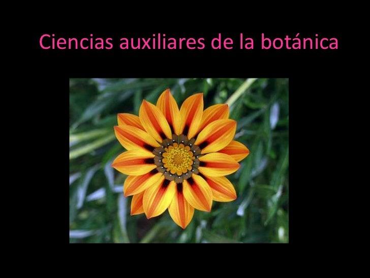 Ciencias auxiliares de la bot nica for Auxiliar jardineria