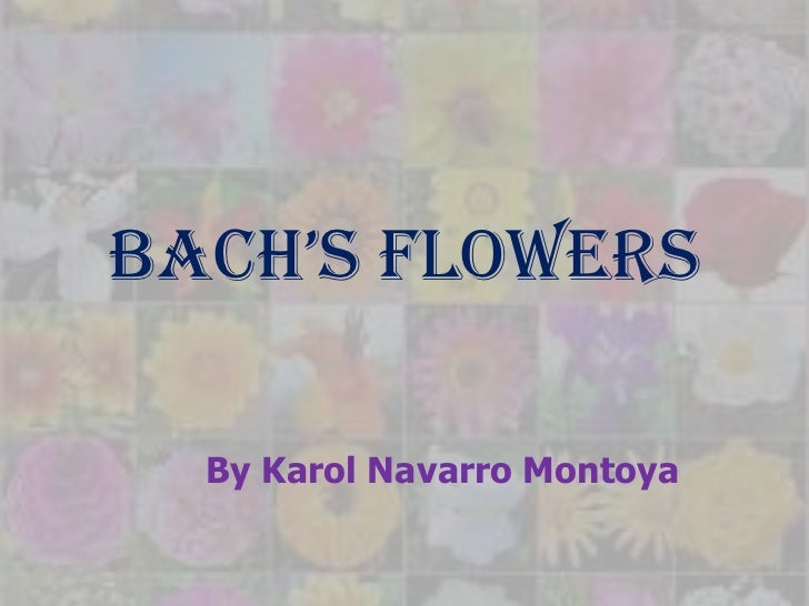 Bach's Flowers  By Karol Navarro Montoya