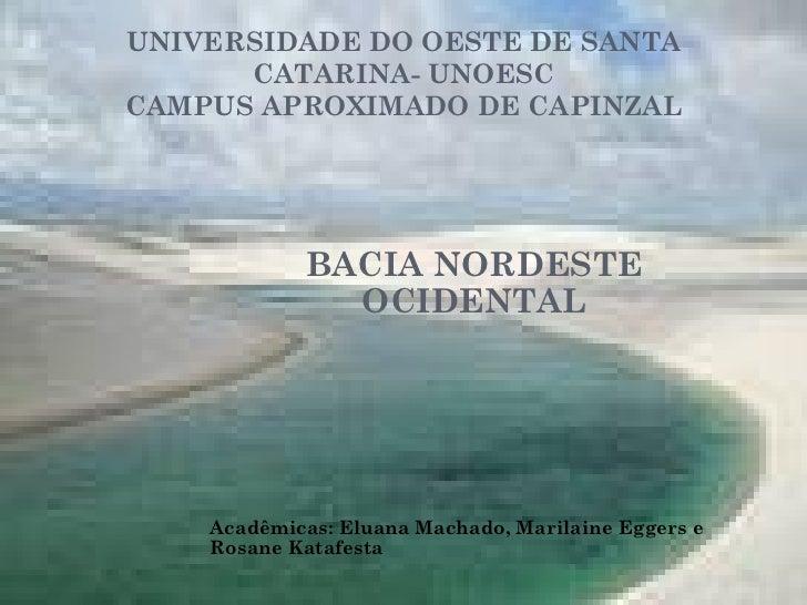 UNIVERSIDADE DO OESTE DE SANTA CATARINA- UNOESC CAMPUS APROXIMADO DE CAPINZAL BACIA NORDESTE OCIDENTAL Acadêmicas: Eluana ...