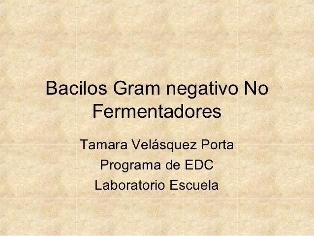 Bacilos Gram negativo No     Fermentadores   Tamara Velásquez Porta      Programa de EDC     Laboratorio Escuela