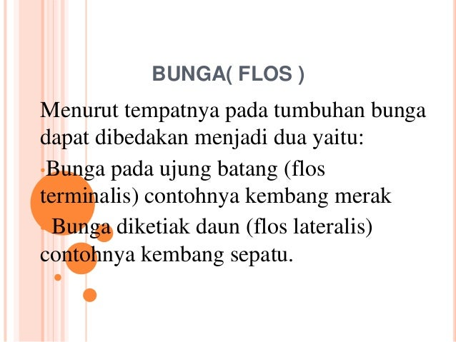 BUNGA( FLOS )Menurut tempatnya pada tumbuhan bungadapat dibedakan menjadi dua yaitu:•Bunga pada ujung batang (flosterminal...