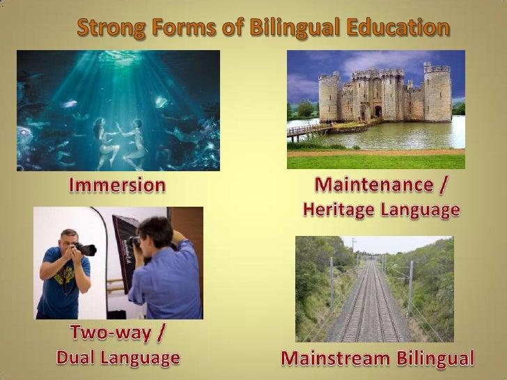 Analyzing types of bilingual education 7 paragraph template toneelgroepblik Gallery