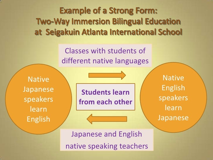 Analyzing types of bilingual education continued next slide 8 toneelgroepblik Image collections