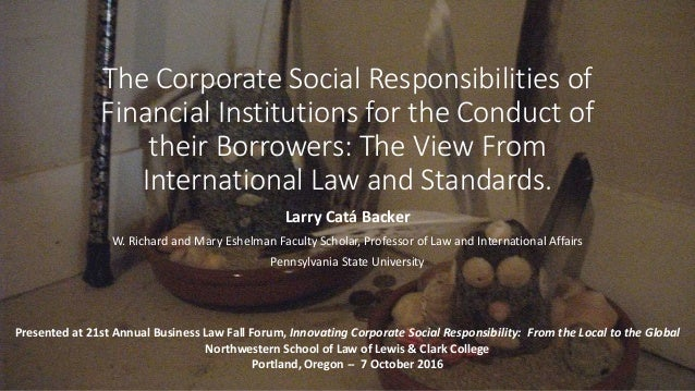 The Corporate Social Responsibilities of Financial Institutions for the Conduct of their Borrowers: The View From Internat...