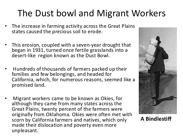 the dust bowl and agriculture essay Mechanized agriculture wheat bubble burst depression a man-made ecological disaster of biblical proportions examining the dust bowl and.