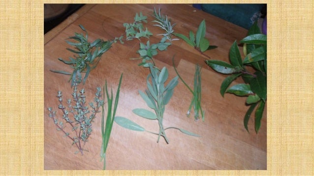 Genial Plant Choices Harvesting ...
