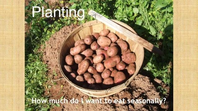 Backyard vegetables for winter storage Slide 3
