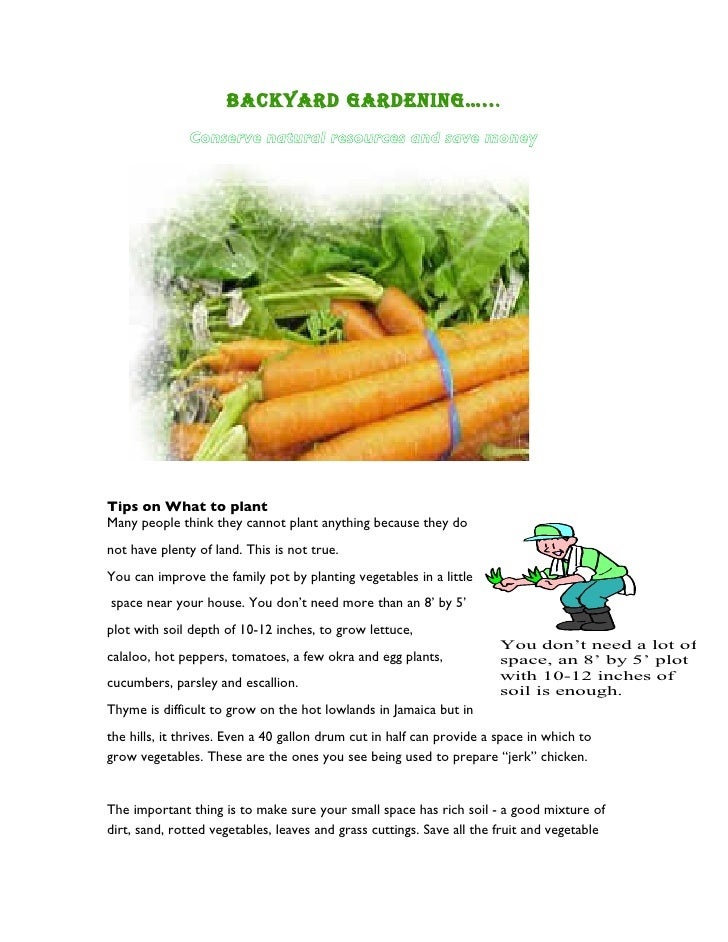 Backyard GardeninG….. .               Conserve natural resources and save money     Tips on What to plant Many people thin...