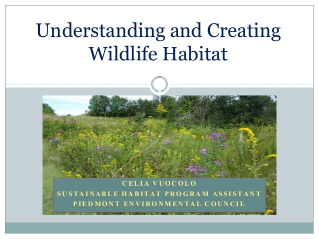 Understanding and Creating Wildlife Habitat C E L I A V U O C O L O S U S T A I N A B L E H A B I T A T P R O G R A M A S ...