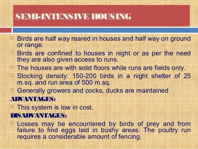 Backyard poultry production