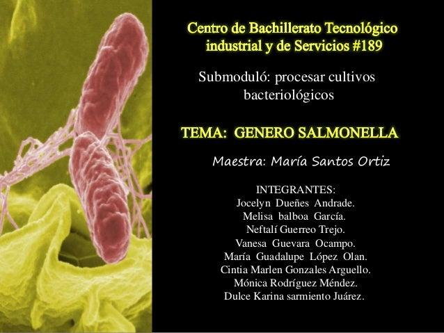 Submoduló: procesar cultivos bacteriológicos INTEGRANTES: Jocelyn Dueñes Andrade. Melisa balboa García. Neftalí Guerreo Tr...