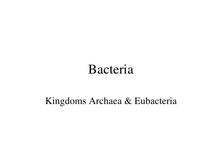 Bacteria Kingdoms Archaea & Eubacteria