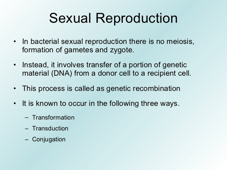 Sexual reproduction in bacteria transformation