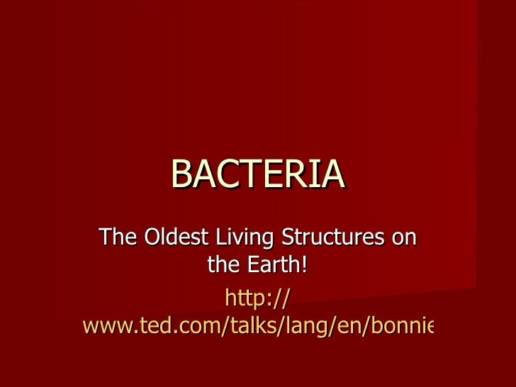 BACTERIA The Oldest Living Structures on           the Earth!             http://www.ted.com/talks/lang/en/bonnie_bassler