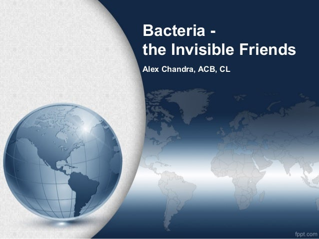 Bacteria the Invisible Friends Alex Chandra, ACB, CL
