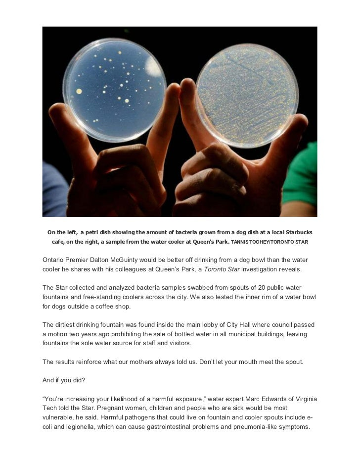 On the left, a petri dish showing the amount of bacteria grown from a dog dish at a local Starbucks   cafe, on the right, ...