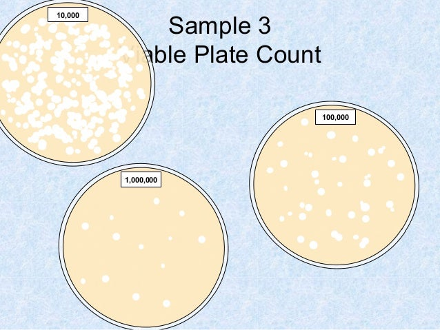 how to count the number of colonies of bacteria