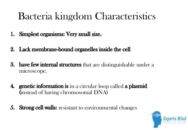 Bacteria Kingdom Characteristics1 Simplest Organisms Very Small Size 2