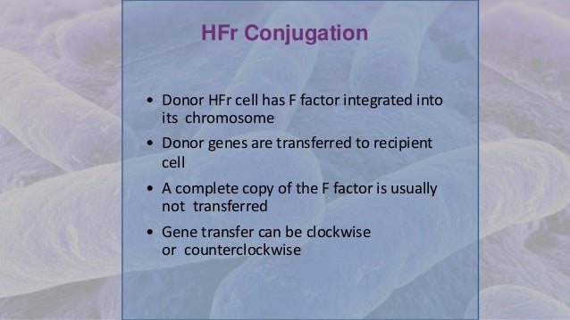 HFr Conjugation • Donor HFr cell has F factor integrated into its chromosome • Donor genes are transferred to recipient ce...