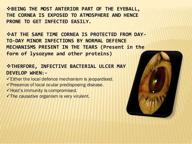 BEING THE MOST ANTERIOR PART OF THE EYEBALL, THE CORNEA IS EXPOSED TO ATMOSPHERE AND HENCE PRONE TO GET INFECTED EASILY. ...