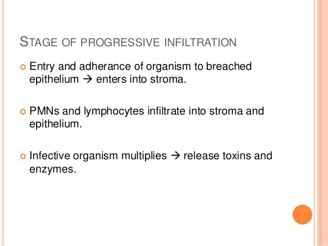 STAGE OF PROGRESSIVE INFILTRATION   Entry and adherance of organism to breached epithelium  enters into stroma.    PMNs...