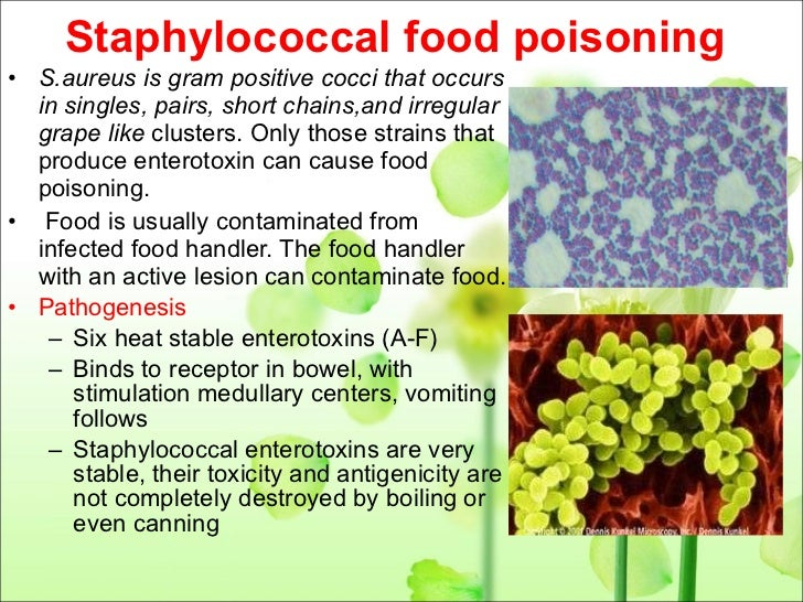 Bacterial food poisoning