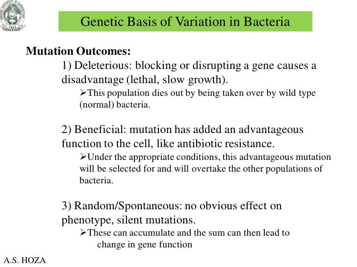 genetics of viruses and bacteria 1 Chapter 18 the genetics of viruses and bacteria lecture outline overview: microbial model systems viruses and bacteria are the simplest biological systems—microbial models in which.
