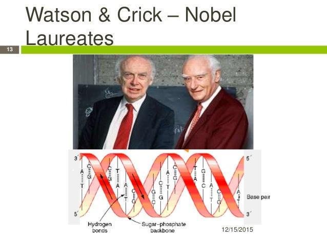 Watson & Crick – Nobel Laureates 12/15/2015 13