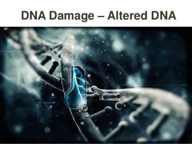 DNA Damage – Altered DNA 12/15/2015 37