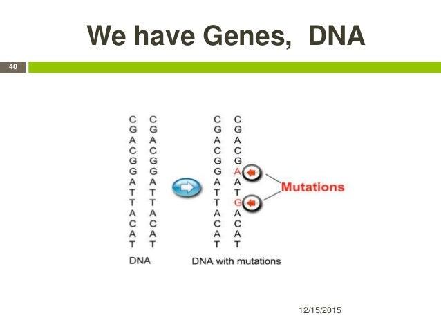 We have Genes, DNA 12/15/2015 40