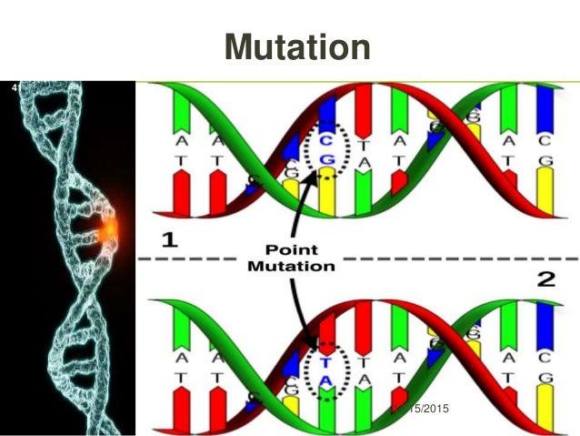 Mutation 12/15/2015 41