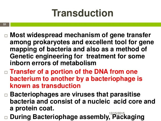 Transduction  Most widespread mechanism of gene transfer among prokaryotes and excellent tool for gene mapping of bacteri...