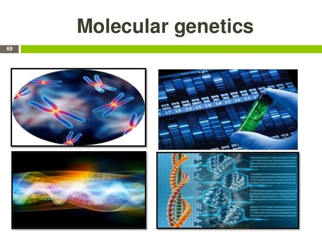Molecular genetics 12/15/2015 69