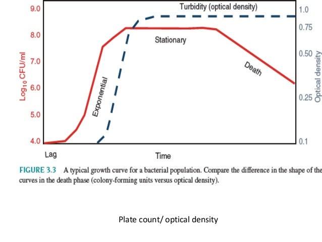 Bacterial Growth Curve Monods Equation