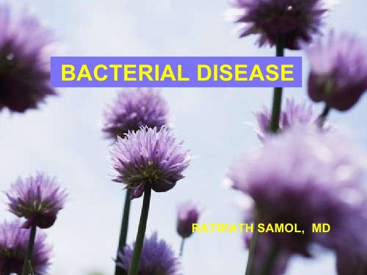 Ratirath Samol, MD. BACTERIAL DISEASE RATIRATH SAMOL,  MD