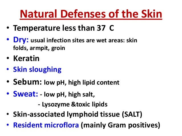 Bacterial infection of the skin  Slide 3