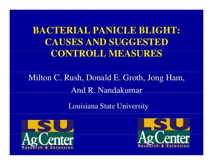 BACTERIAL PANICLE BLIGHT:   CAUSES AND SUGGESTED    CONTROLL MEASURESMilton C. Rush, Donald E. Groth, Jong Ham,           ...