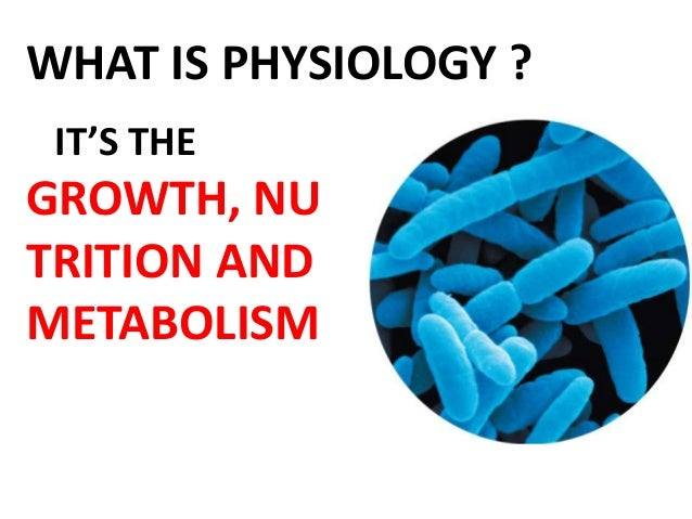 bacterial physiology ppt, Human Body