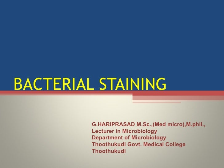 BACTERIAL STAINING G.HARIPRASAD M.Sc.,(Med micro),M.phil., Lecturer in Microbiology  Department of Microbiology  Thoothuku...